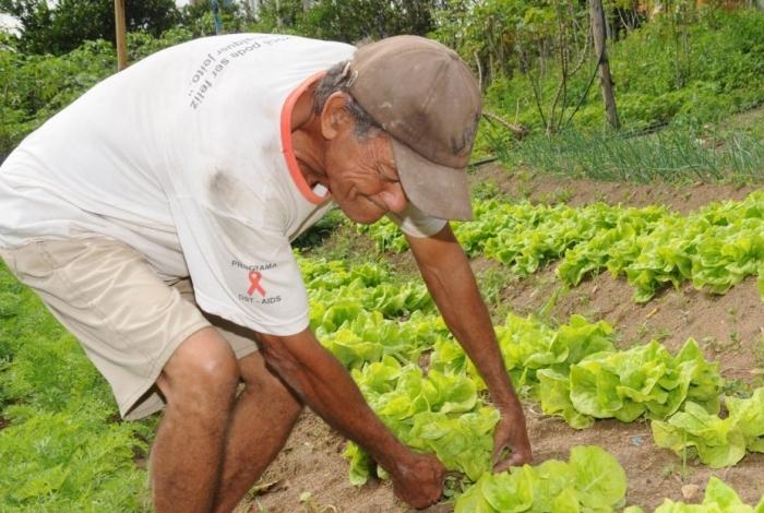 Trinta tipos de alimentos são oferecidos na alimentação escolar pelos produtores rurais de Quissamã