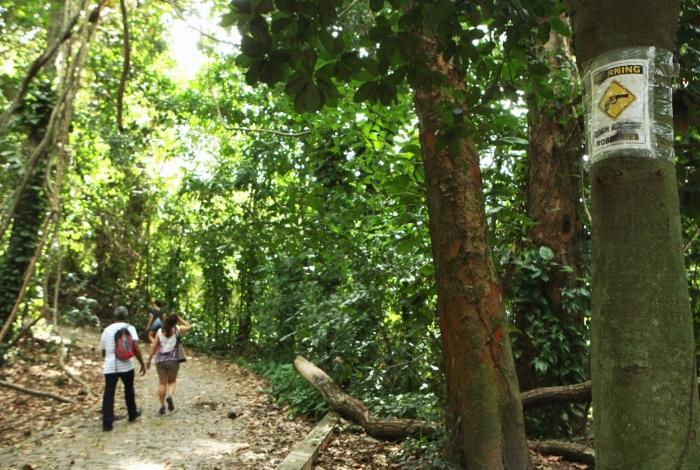 Cerca de 40 turistas são roubados em trilha do Parque Lage, nesta quinta-feira.