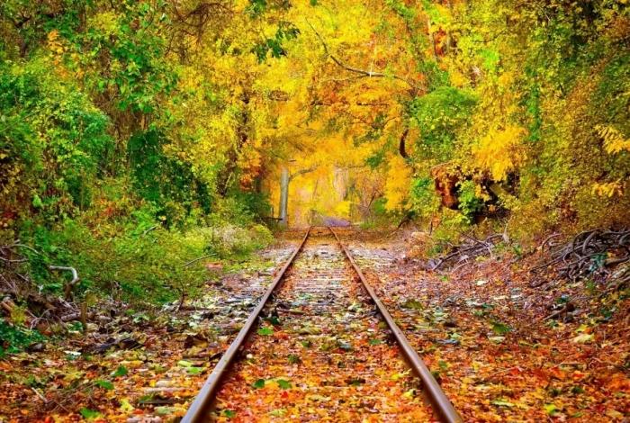 trilho, trem, paisagem, capa