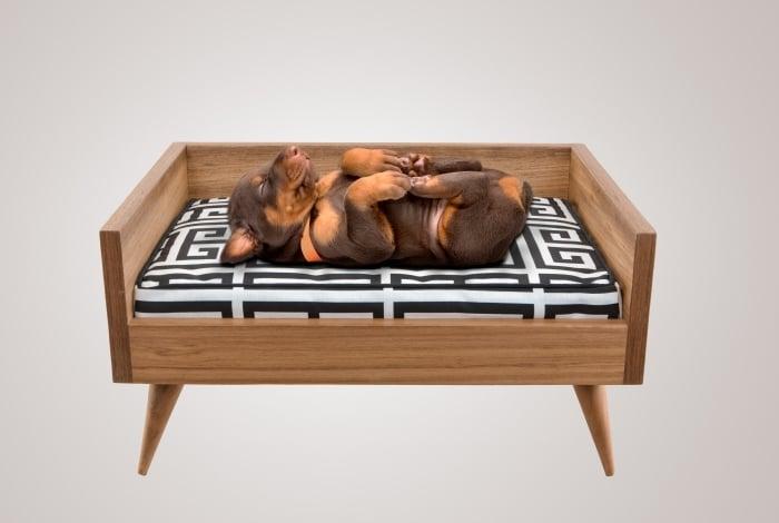 DECORAÇÃO. A Bicho Fino produz móveis que podem ser usados pelos pets e pelos donos