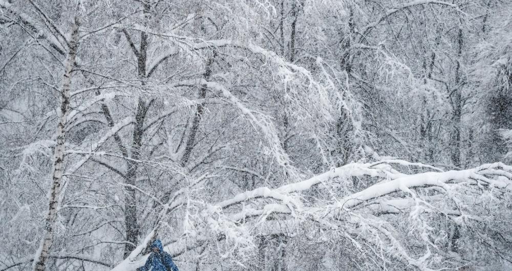 Moscou enfrenta a pior nevasca da hist�ria. Pelo menos uma pessoa morreu por uma queda de �rvore por conta do peso da neve. Nas ruas, os pedestres est�o com dificuldades para caminhar nas ruas tomadas por montes de neve com mais de um metro de altura. Aeroportos cancelaram voos e engarrafamentos tomam conta da cidade