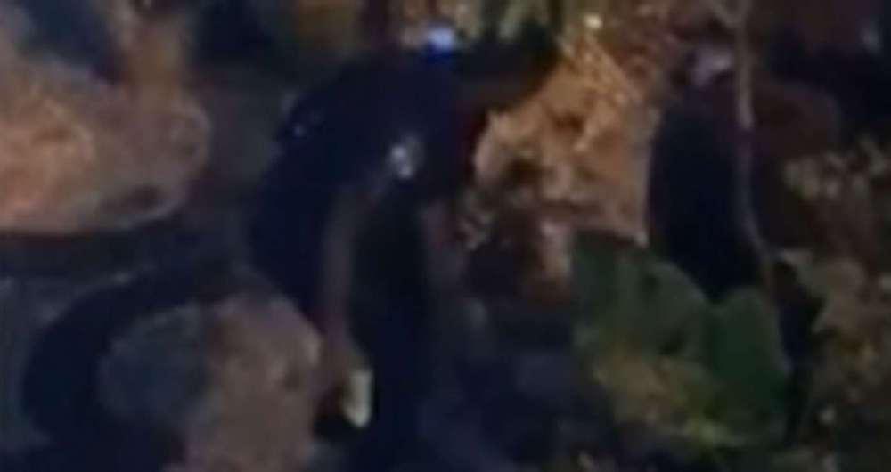Policial usa pistola de choque contra morador de rua