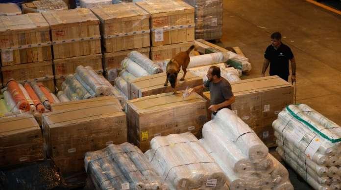 C�o farejador em a��o: carga chegou ao Rio em setembro e ficou retida no Gale�o por falta de documentos