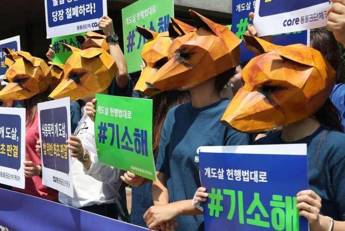 Ativistas sul-coreanos de direitos dos animais usam m�scaras de cachorro ao se manifestar em apoio � decis�o judicial de que matar c�es para consumo � ilegal