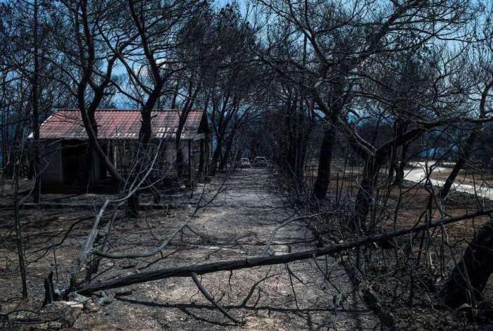 Incêndios já deixam 91 mortos na Grécia