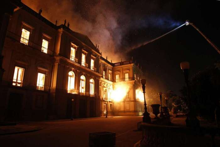 Acervo de invertebrados foi salvo do incêndio do Museu Nacional