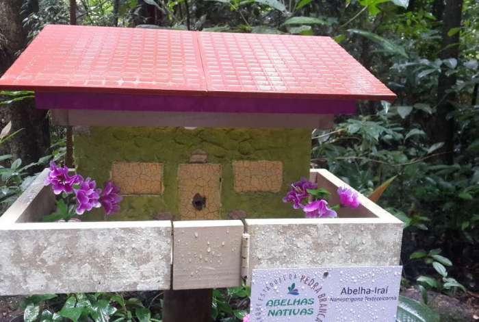 Abelhas no Parque Estadual da Pedra Branca catalogadas por Furnas. Casa temática para abelhas Irai