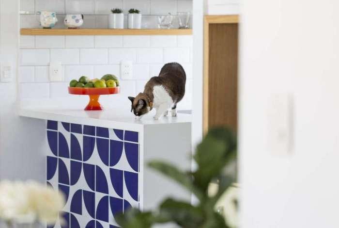 Especialistas indicam criar nova convenção para explicar a permissão de animais domésticos