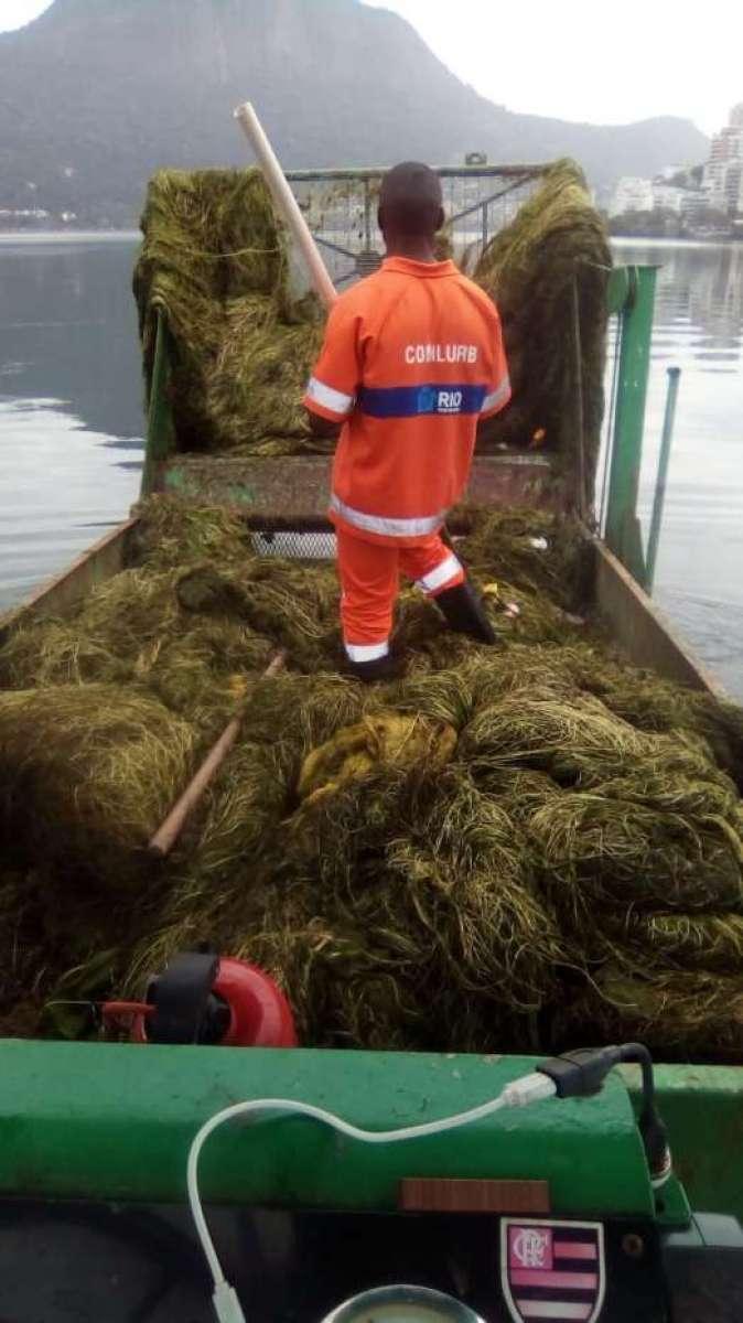 Comlurb trabalha na retirada de algas da Lagoa Rodrigo de Freitas