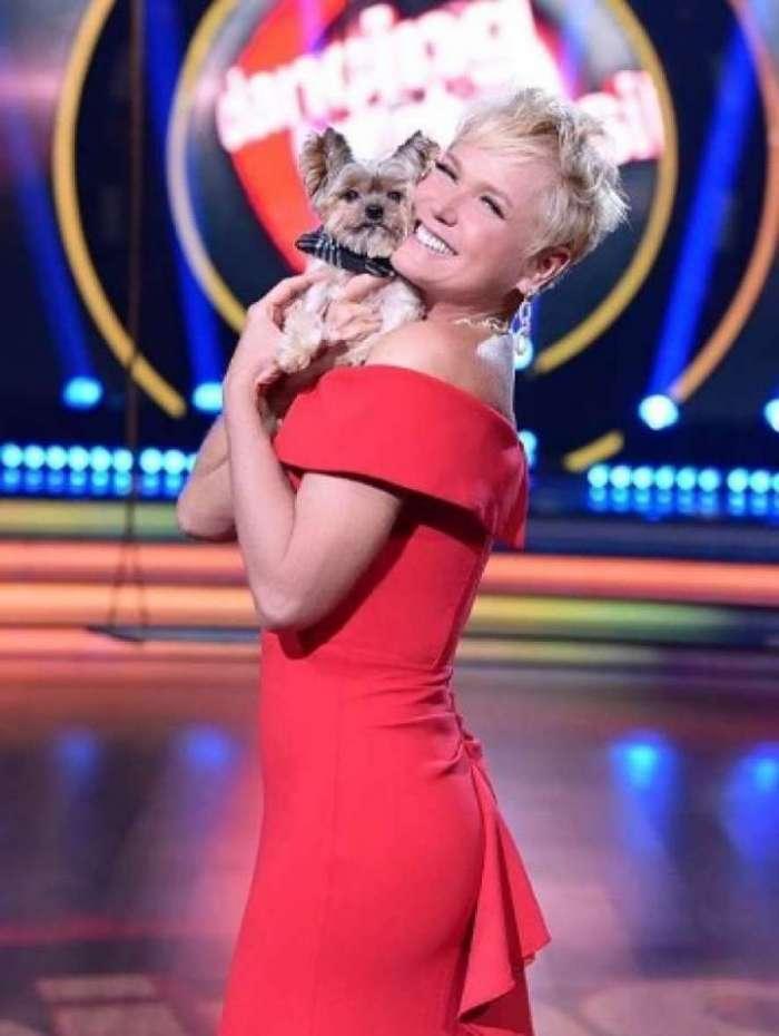Apresentadora Xuxa Meneghel e seu cãozinho Dudu