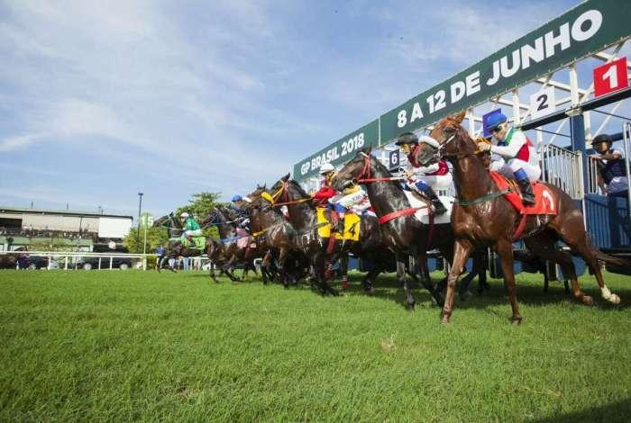 Jockey Club Brasileiro tem a maior arrecadação de apostas dos últimos 20 anos. PMU, empresa que gerencia o sistema de apostas, pretende expandir atuação em 2019