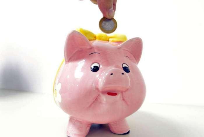 Empresas do ramo e especialistas orientam como registrar o rendimento