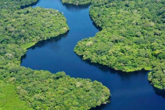 Do total de R$ 1 bilhão destinado à Amazônia Legal, R$ 430 milhões devem ser repassados pela União aos estados da região, levando em consideração a área desmatada