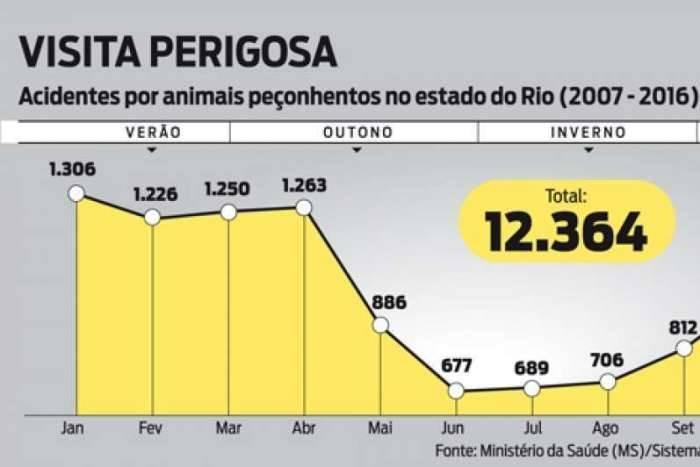 De 2007 a 2016, Rio contabilizou mais de 12.300 acidentes por animais peçonhentos