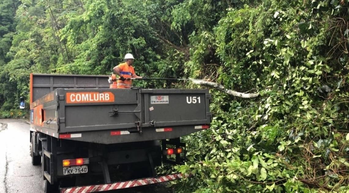 Comlurb trabalha na retirada de árvore caída na Grajaú-Jacarepaguá