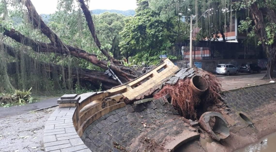 Árvore caiu e levantou calçada e manilhas de esgoto na Avenida Visconde de Albuquerque, no Leblon