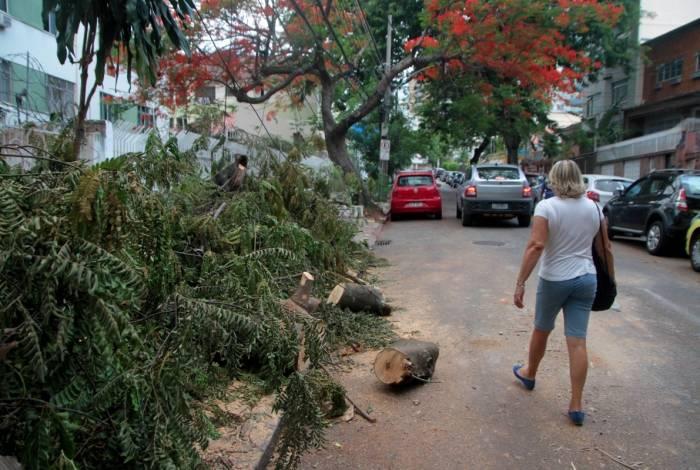 Na Rua José Veríssimo árvores interditaram calçadas e interromperam o fornecimento de água