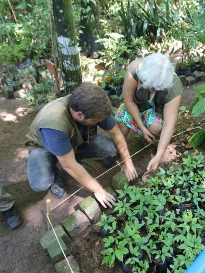Em Niterói, programa de reflorestamento vai contemplar as ilhas e praias da Região Oceânica