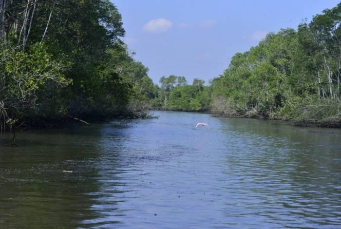 APA Guapimirim, da Baía de Guanabara, fica em Magé