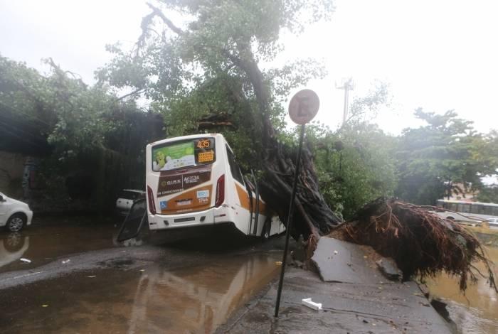 Duas árvores caíram na Av. Visconde de Albuquerque, atingindo veículos