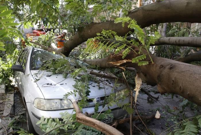 Árvore caída na Rua Jose Veríssimo, esquina com Rua Dias da Cruz, no Méier. Ventania e chuva causaram estragos e deixou moradores sem luz