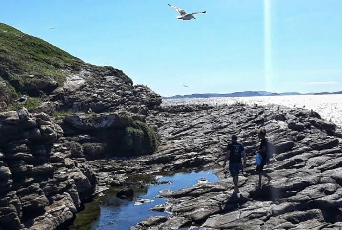 Em Arraial do Cabo, um mutirão de limpeza organizado no dia 27 de abril se concentrou em uma parte do Parque Estadual Costa do Sol