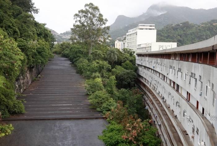 A imagem mostra as árvores que ficam entre o Túnel Acústico e o condomínio: o medo como vizinho