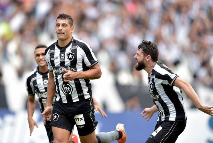 Diego Souza comemora o gol do Botafogo