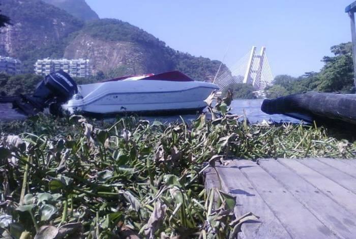 A Eichhornia crassipes, mais conhecida como gigoga, é um vegetal que se desenvolve no meio ambiente aquático contaminado