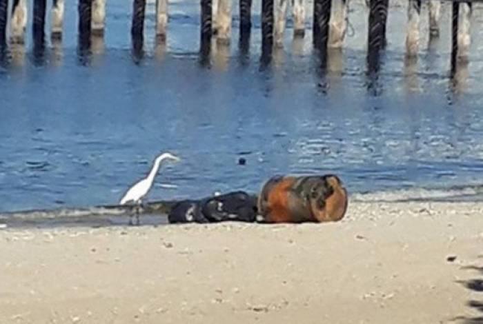 Partes de corpo humano são encontradas na Praia da Bica