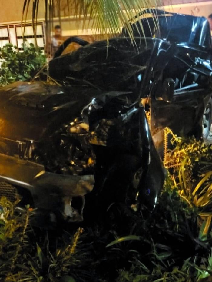 Bandidos derrubaram uma árvore ao capotarem com o carro
