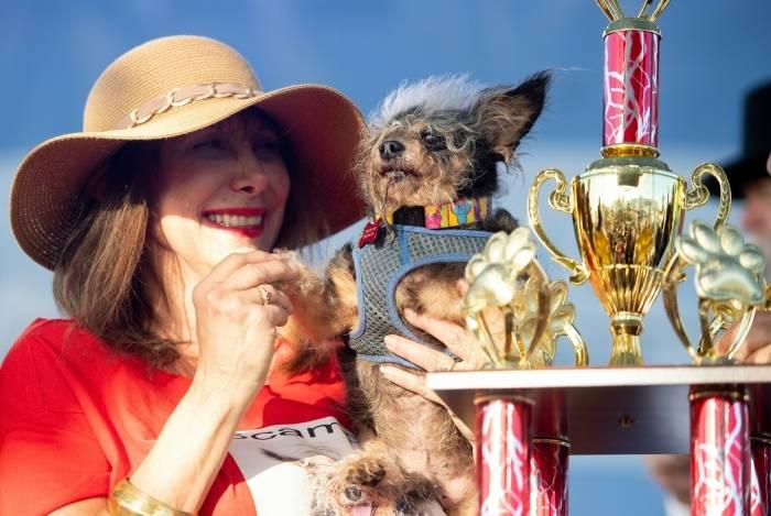 Scamp the Tramp, o cão mais feio do mundo, e sua dona