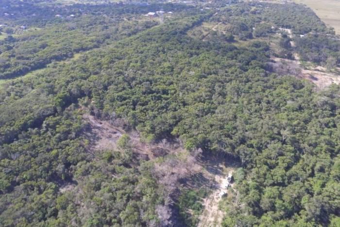 Olho no Verde da Secretaria de Estado do Ambiente e Sustentabilidade identifica e reprime desmatamento em área equivalente a oito estádios de futebol