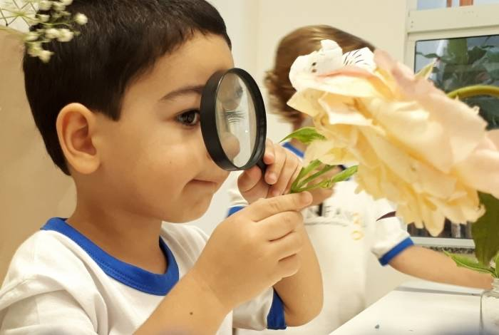 Natureza inspira crianças na exposiçaÌ?o Mandala