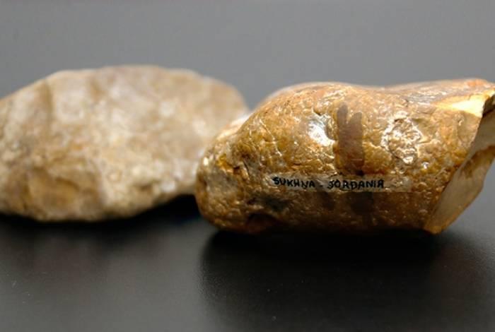 Descoberta de pedra lascada indica mudanças na história evolutiva dos humanos