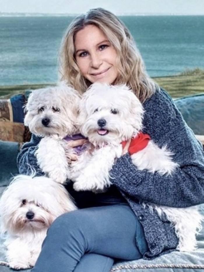 Barbra Streisand com suas cachorrinhas
