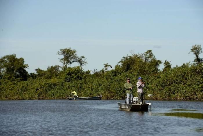 Manguezais do município de Guapimirim serão beneficiados com 500 mudas do projeto. Vão ser plantadas espécies típicas, como os mangues vermelho, preto e branco. Ao lado, o caranguejo açú