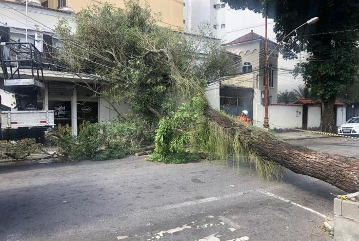 Queda de árvore interditou a Rua Alves de Brito, na Tijuca, Zona Norte do Rio, na tarde de ontem