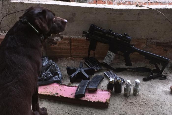 Houve apreensão de armas e foram cumpridos mandados de prisão contra sete traficantes na Serrinha