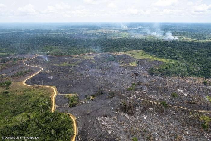 Grandes queimadas na região amazônica são alvos de críticas ao governo de Jair Bolsonaro