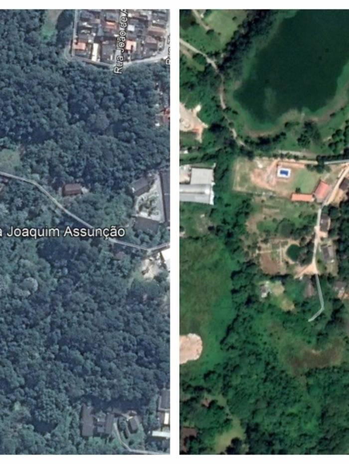Relatório mostra crescimento no desmatamento em São Paulo
