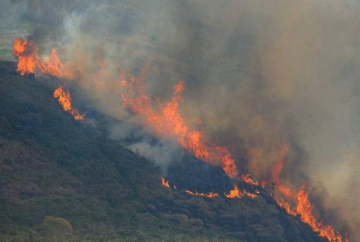 O Código Florestal permite queimadas em casos específicos