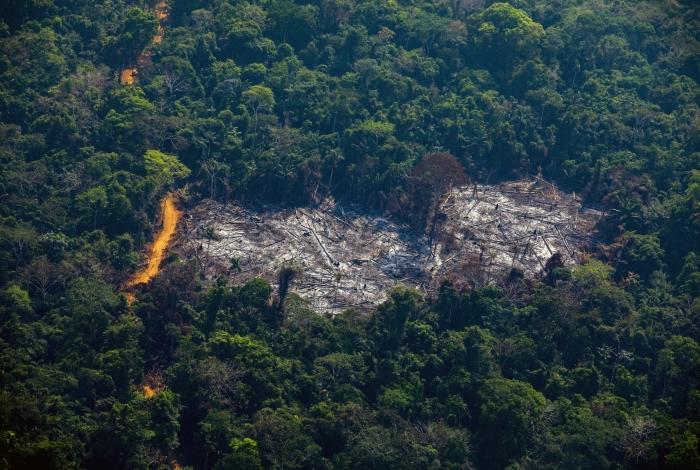 Medida é para ajudar no combate ao desmatamento na Amazônia