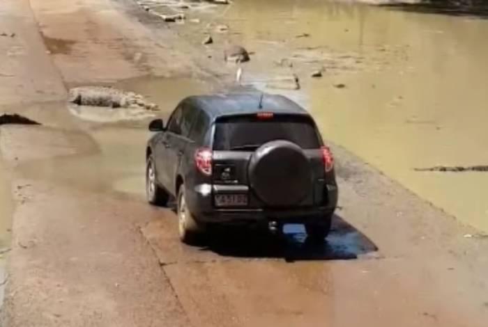 Animais cercaram o carro dos turistas, que tiveram que esperar até poder seguir viagem