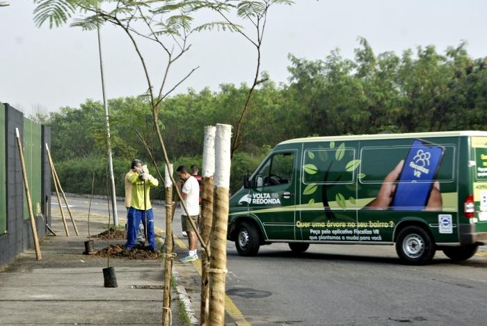 Em 2019, foram plantadas 5.029 mudas na cidade