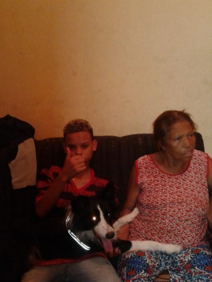 Depois de quase um mês, família finalmente reencontra o cão Apolo