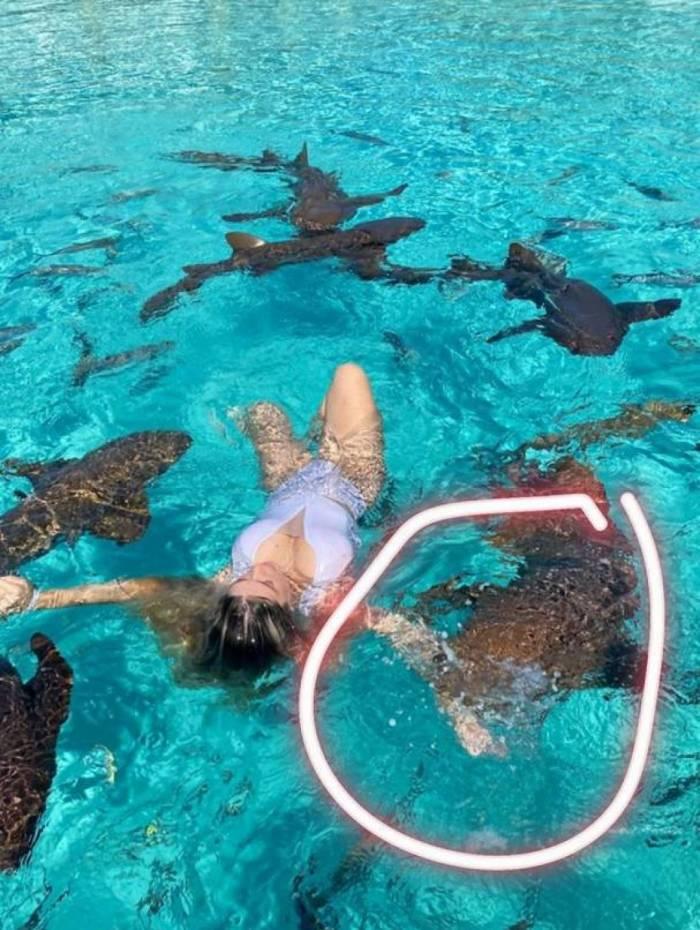 Digital influencer nada com tubarões nas Bahamas e leva mordida