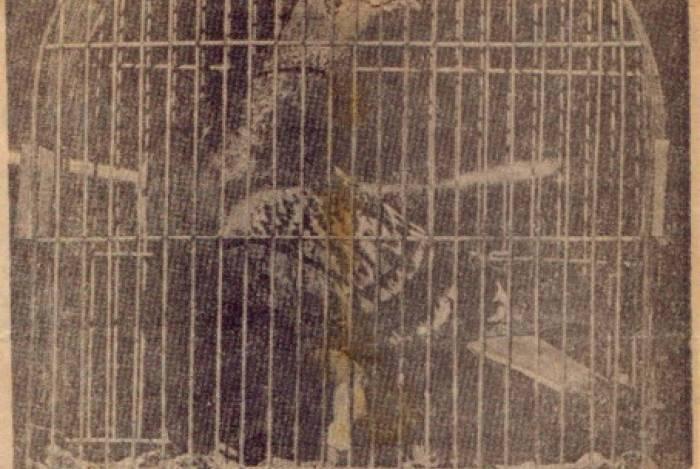 Pombo-correio foi preso em Cabo Frio acusado de subversão