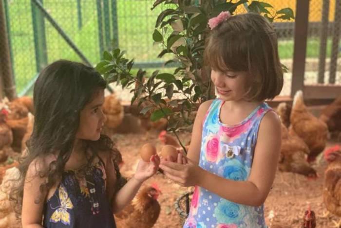 Aventuras Maternas: dicas para curtir a folia em família