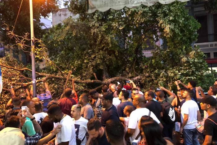 Queda de árvore fechou a Rua Uruguaiana, no Centro, na noite desta sexta-feira